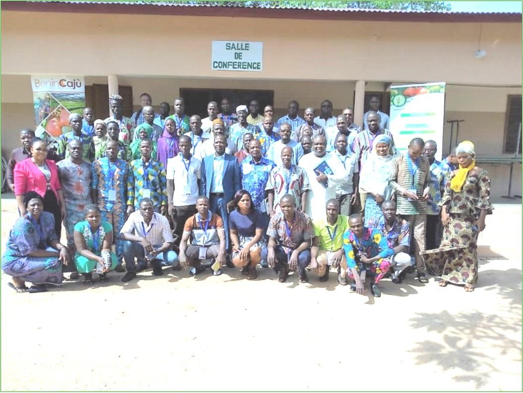 Professionnalisation des producteurs d'anacarde: BéninCajù et FENAPAB lancent le programme Proleader
